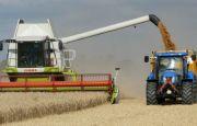 Dobra prognoza dla targów rolniczych EuroAgro – wysokie plony na Ukrainie