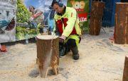 To już tradycja – dynamiczne pokazy rzeźbienia pilarką podczas LAS-EXPO