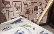 Edukacja i ekologia na KIDS' TIME