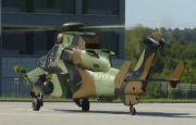 Tygrys wylądował w Targach Kielce