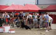 RESCUE DOGS IN LIVE-SHOWS AT TARGI KIELCE