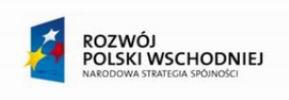 rpw_narodowa_strategia_spojnosci