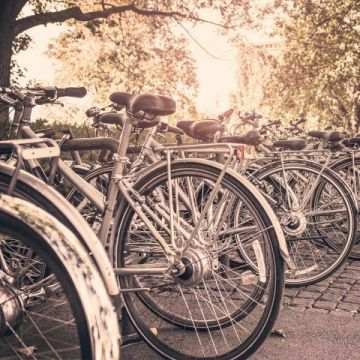 Electric bicycles are in the up-trend - it's worth knowing how to take care of them