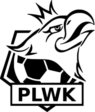 Polska Liga Wirtualnych Klubów