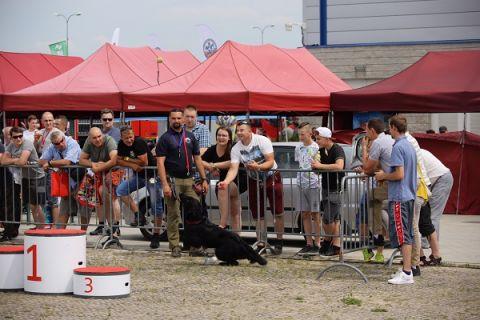 RESCUE DOGS IN LIVE-SHOWS AT TARGI KIELCE